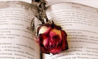 12 Historias De Amor Que Alegrarán Tu Día