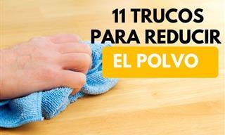 Estos 11 Consejos Te Ayudarán a Reducir El Polvo En Tu Hogar