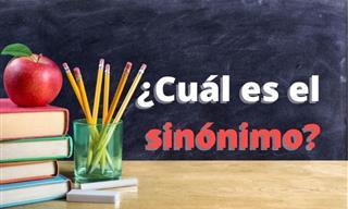 ¿Podrás Identificar Los Sinónimos De Estas Palabras?
