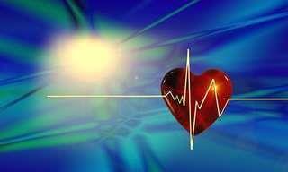 Imperdible Entrevista Con Un Famoso Cardiólogo