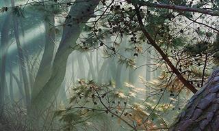 La Naturaleza Llega a Tu Hogar Con Estas Pinturas De An Jung-hwan