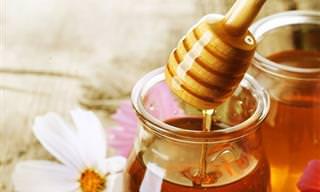 Guía: Todo Lo Que Siempre Quisiste Saber Sobre La Miel