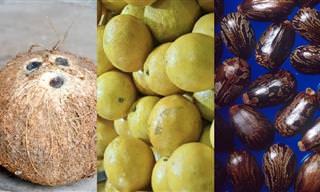 4 Alternativas Naturales Para Reemplazar Productos Químicos