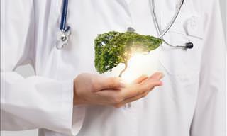 ¿Sabes Cómo Proteger Tu Hígado? ¡Te Lo Contamos!