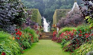 ¡Te Presentamos Los Jardines Más Bellos De Inglaterra!