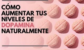 6 Formas De Incrementar Naturalmente Tus Niveles De Dopamina