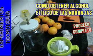 ¿Sabías Que Puedes Producir Alcohol Con Otras Frutas?