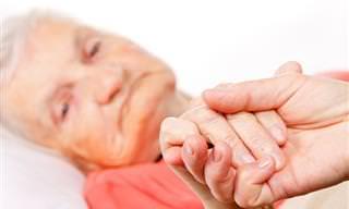Estimulación Cerebral Profunda Para Tratar El Alzheimer