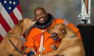 Nunca Es Un Mal Momento Para Unas Fotos Divertidas De Perros