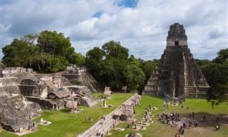 Tecnología Revolucionaria Descubre 60,000 Sitios Mayas En Guatemala