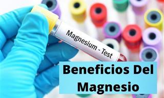 Todo Lo Que Debes Saber Sobre El Magnesio
