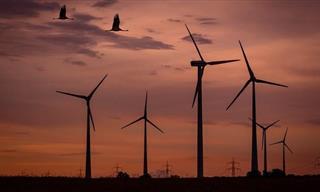 La Energía Renovable De Bajo Costo Está a La Alza