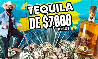 El Sitio Que Produce El Tequila Más Costoso Del Mundo