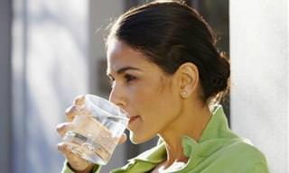 ¿Comiste Comida En Mal Estado? 10 Remedios Naturales