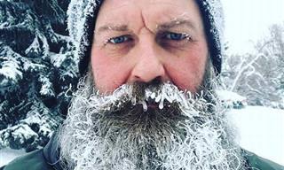 20 Espectaculares Imágenes De Las Secuelas Del Frío En Norteamérica