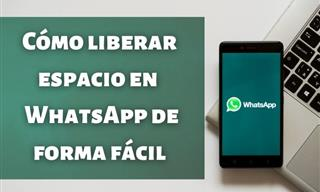 Evita Que WhatsApp Se Coma La Memoria De Tu Celular