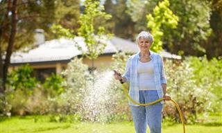 Practicas Populares De Jardinería Que Terminarán Dañando Tus Plantas