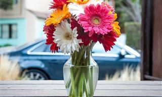 Guía: Mantén Tus Arreglos Florales Frescos