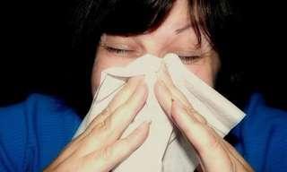 10 Técnicas De Prevención Para Alergias Estacionales
