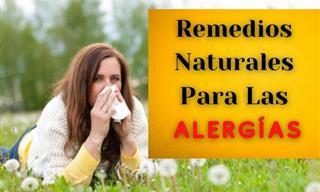 7 Consejos Para Combatir Las Alergias Nasales Esta Temporada