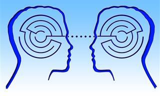 ¿Qué Parte De Tu Cerebro Es Más Predominante?