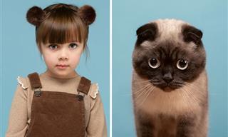 El Parecido Entre Estos Gatos y Sus Dueños Te Asombrará