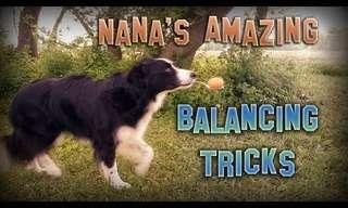 Los Trucos De Equilibrio De Nana…