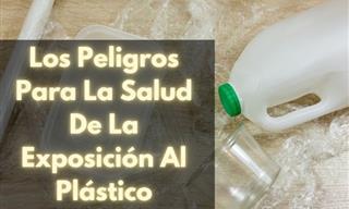 Así Es Como Los Plásticos Pueden Afectar Severamente Tu Salud