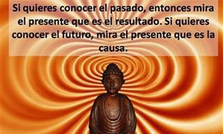 7 Frases Budistas Que Cambiarán Tu Forma De Pensar