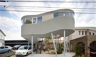 Únicos y Extravagantes Como Sus Casas: Maravilloso Japón