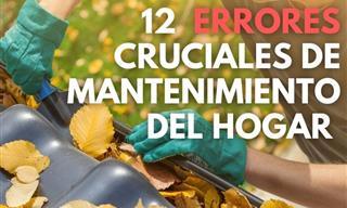 12 Errores Cruciales De Mantenimiento Del Hogar