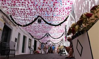 El Festival De Flores De Campo Maior, Portugal