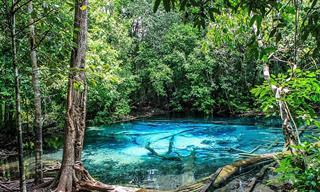 20 Espectaculares Fotografías De La Maravillosa Kabri En Tailandia