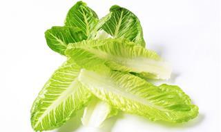 7 Posts Con Las Mejores Verduras De Hoja Verde