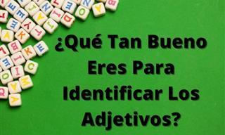 Test: ¿Qué Tan Bueno Eres Para Identificar Los Adjetivos?