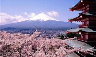 Las Vistas Más Privilegiadas Del Monte Fuji