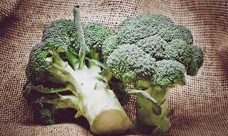 Prueba Adicional De Que El Brócoli Es Bueno Para Ti