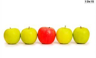¿Puedes Identificar <b>El</b> Objeto Diferente?