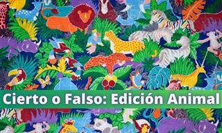 Cierto o Falso: Edición Animal