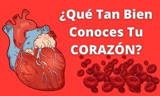 ¿Qué Tanto Sabes Sobre <b>El</b> Corazón?