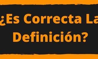 ¿<b>Es</b> Correcta La Definición?