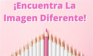Encuentra La Imagen <b>Diferente</b>