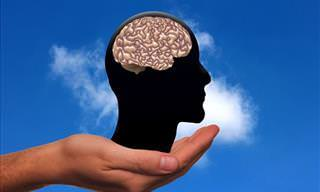 ¿Cómo Funciona Tu Cerebro? Compruébalo <b>Con</b> Este Test