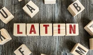 ¿Cuántas Palabras <b>En</b> Latín Conoces?